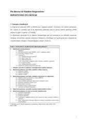 Pla Director-HP (2).doc