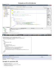 Trabajando con JSP en Wed Aplicacion.doc
