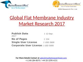 Global Flat Membrane Industry Market Research 2017.pptx
