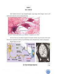 makalah sistem saraf.docx
