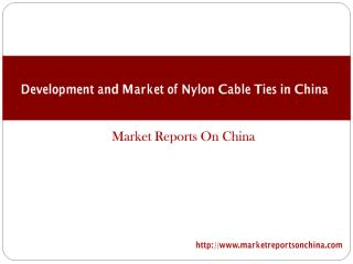 Development and Market of Nylon Cable Ties in China 2016-2020 (1).PDF