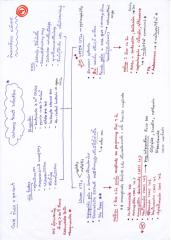 IMG_0008 (1).pdf